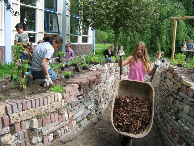 Kinderen helpen mee een houtsnipperpad te vullen tusseneveneens zelfgestapelde keermuren van hergebruikte stenen. En ook bij de beplanting worden de kinderen betrokken.  CBS De Magneet in Amersfoort (Netherlands)