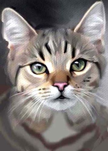 ACEO OIL PAINTING CAT GREY TABBY GREEN EYES BY BRADBERRY | eBay