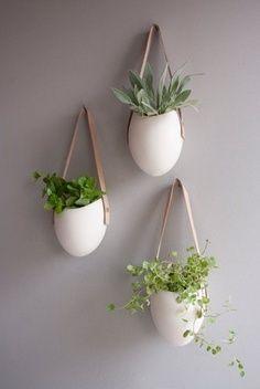 planten wand planken - Google Search