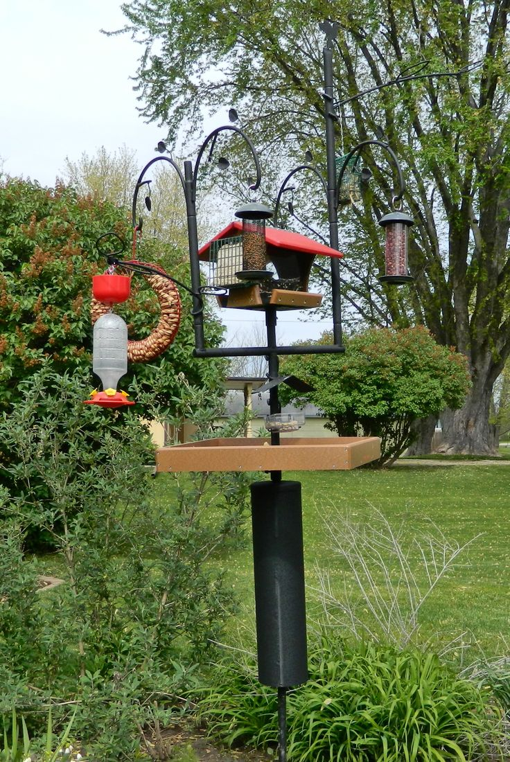 "My nearly completed ""Advanced Pole System""- all but some of the feeders are from Wild Birds Unlimited. I bought the pieces separately to customize it, but a basic setup (1 48"" base pole w. auger, 1 48"" extension pole, stabilizer, double crook arm and chickadee finial) is $76.99. Of course, I added a bunch of other things :)"