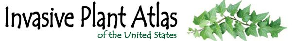 Invasive Plant Atlas of the USA. Easy to use atlas to learn before you buy.