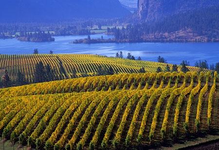 British Columbia Okanagan Valley