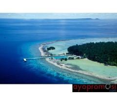 Karimunjawa #ayopromosi #wisata www.ayopromosi.com