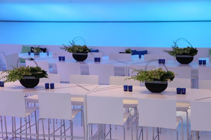 Creative setup at this #blue #uplighting #wedding #reception! #diy #diywedding #weddingideas #weddinginspiration #ideas #inspiration #rentmywedding #celebration #weddingreception #party #weddingplanner #event #planning #dreamwedding by @lindsaylandman