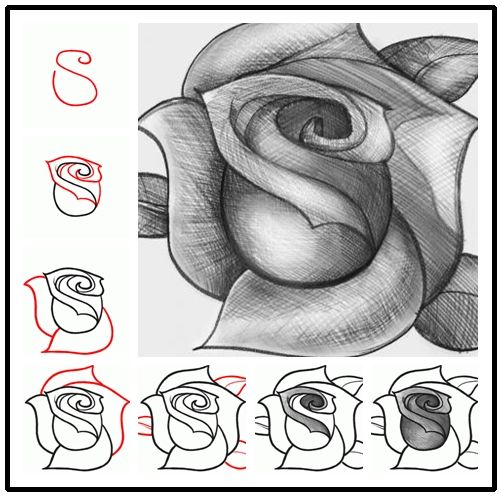 How To Easily Draw A Rose | DIY Cozy Home