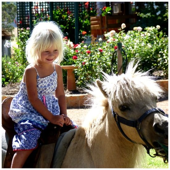 Introducing the Fabulous Ferguson Valley (to yTravelBlog) - Ferguson Farmstay is great for kids - www.zigazag.com