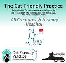 We are a Cat Friendly Practice (CFP Certified since 2014).