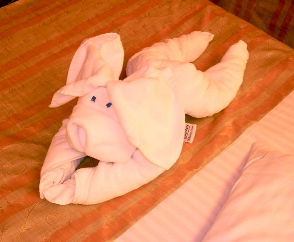 "Multiple ""Towel animals"""