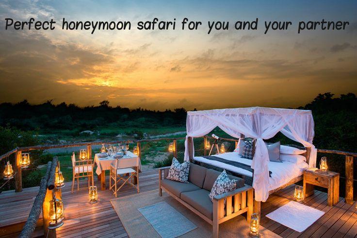 Looking for a top Honeymoon Safari destination?