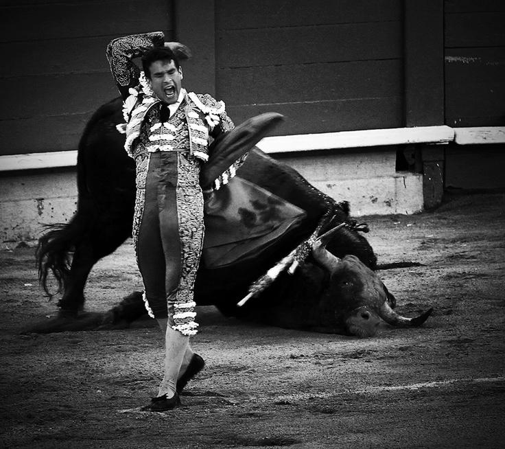 El matador finalmente mata el toro,pero primeo el picador ...