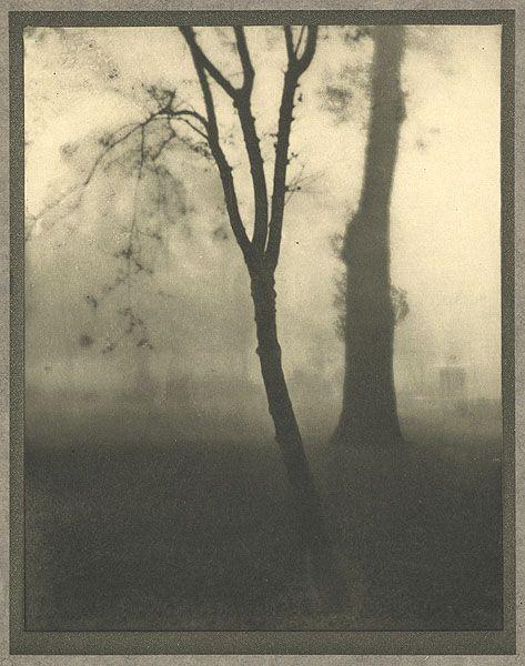 Kensington Gardens, November Coburn, Alvin Langdon, b.1882-1966 London, 1910 17 x 22.6 cm Photogravure