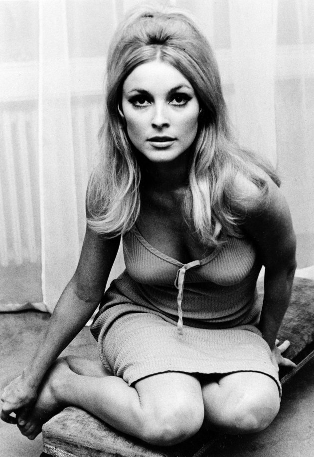 Actress Sharon Tate is shown in 1965- murdered in the Tate LaBianca Murders (manson murders) 1969
