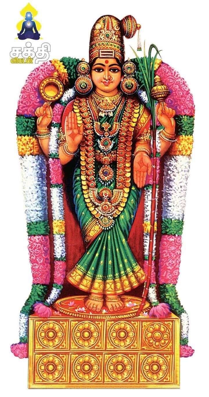 Most Inspiring Wallpaper Lord Amman - 7a834362c3dfa5da20e8b44a665fb6f6--indian-gods-indian-art  Collection_1163100.jpg