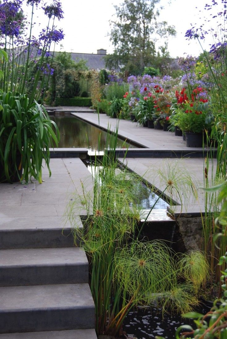 BUCKET LIST!!! Reflecting Pool in Helen Dillon's Dublin Garden, Gardenista