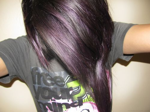 25 Best Ideas About Subtle Purple Hair On Pinterest
