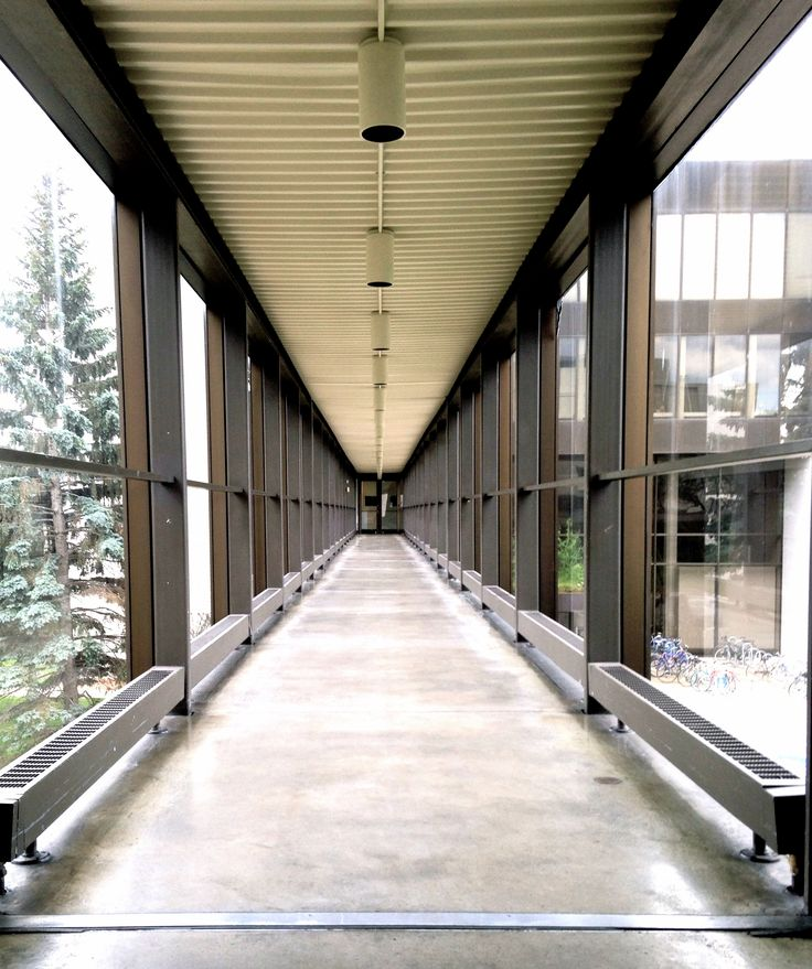 MCAD's College Skyway, presented by Mrs. Angus W. Morrison and Clinton Morrison
