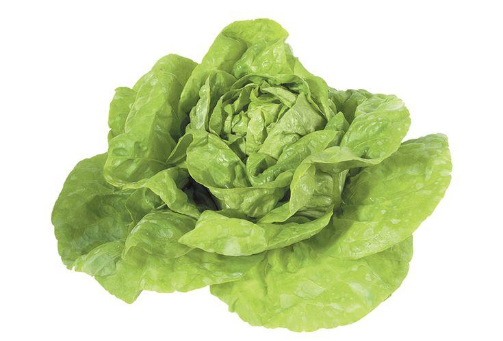 Fejes saláta | Termék | www.vitaminszalon.hu
