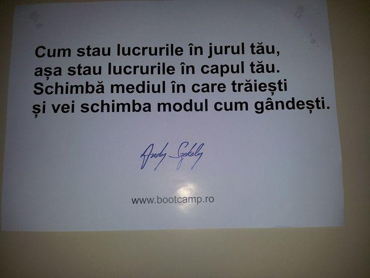 citat andy szekely-3