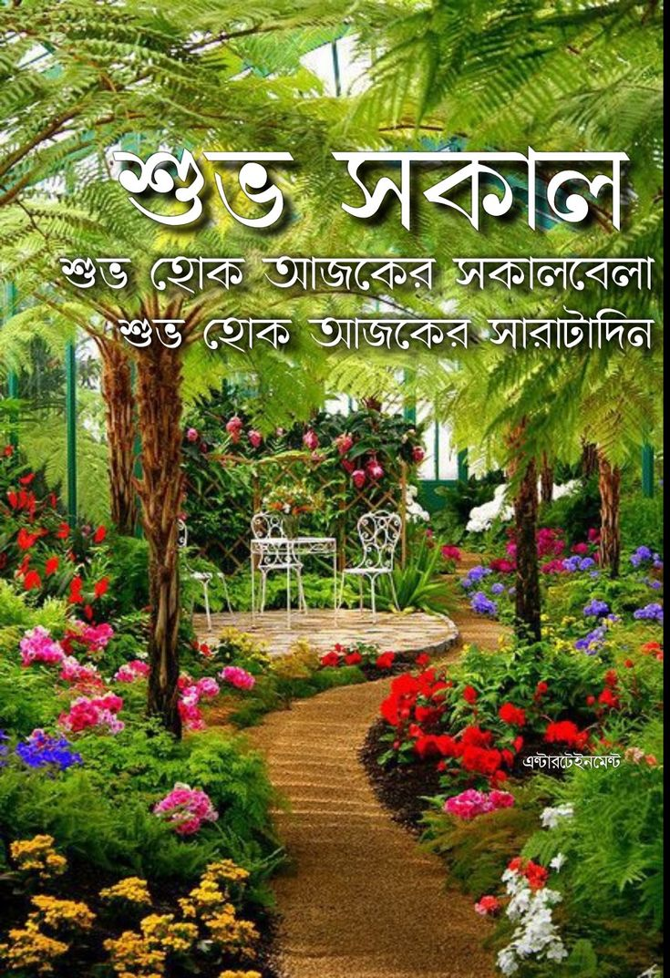 Pin by Monoranjan on সুপ্রভাত in 2020 (With images