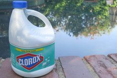 How To Mix Clorox And Baking Soda For Chlorine For Your