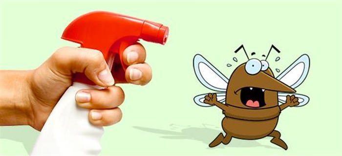 Κοινοποιήστε στο Facebook Ενώ υπάρχουν πολλά ισχυρά εντομοκτόνα που υπόσχονται να κρατήσουν τα έντομα μακριά, δεν είναι απαραίτητα καλό για εσάς και τους αγαπημένους σας! Οι ισχυρές χημικές ουσίες των εν λόγω παρασκευασμάτων μπορούν να καταστρέψουν τον κήπο σας, να...