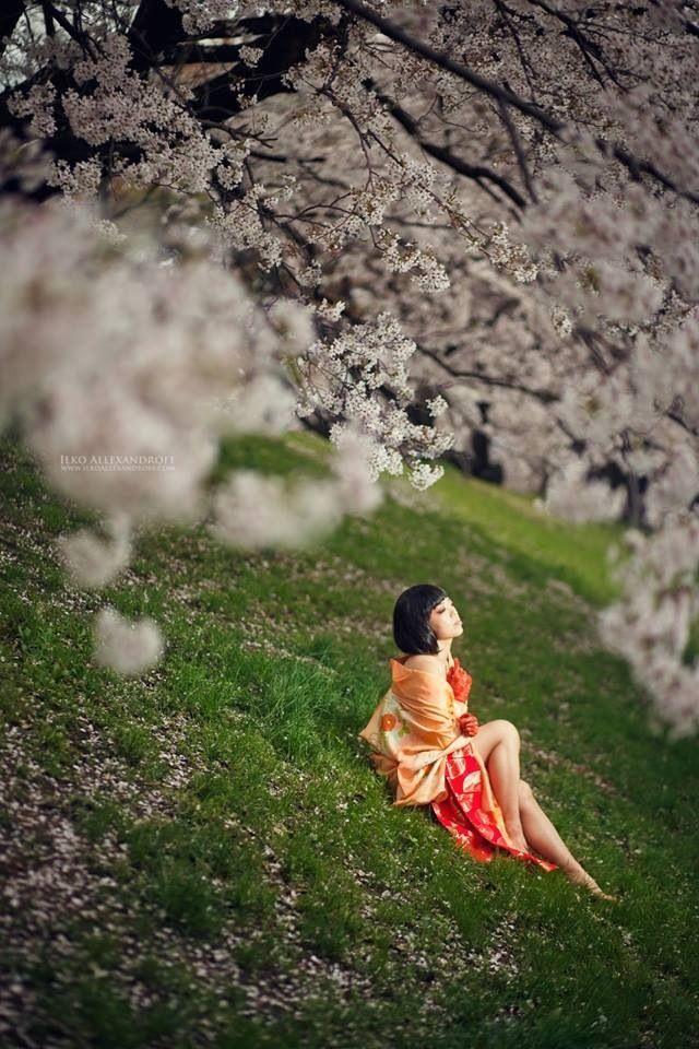 Sakura Japan  ◆◆◆Model-柚月恵  柚月 恵 Dancing is Beauty-  www.dancing-is-beauty.com  http://www.facebook.com/megum iyuzuki.dancing  一般社団法人 日本ポールダンスセラピー協会 http://pole-dance-therapy.com  http://kobemd.com/movie/movie0023/  Photo-Ilko allexandroff  ★