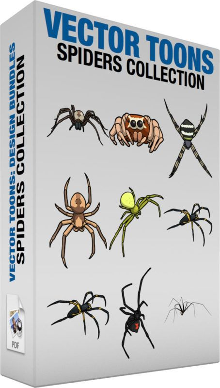 Spiders Collection :  Bundle of images includes the following:  A Fox Spider A spider with brown legs beige with light brown abdomen dark gray fangs  A Jumping Spider A spider with short thick light orange legs dark orange body with a light yellow mark two big brown eyes and two small black eyes near the edge of the head  A Cross Spider A spider with long thin striped black and beige legs striped black and white with a neon green abdomen and gray head  An Orb Spider A spider with light…