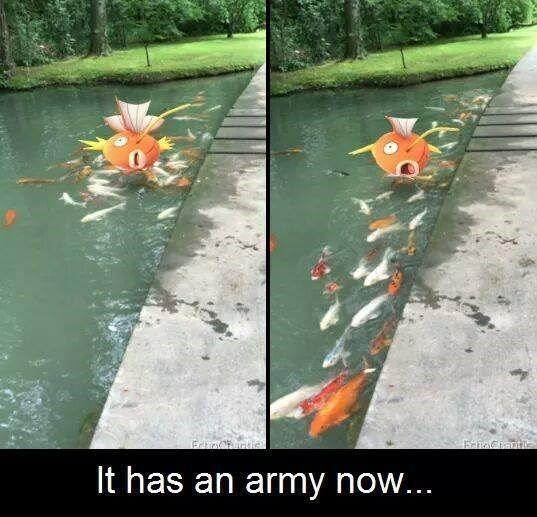 "When Magikarp Brings Reinforcements << ""who is useless now...splash, my little minions, splash"""