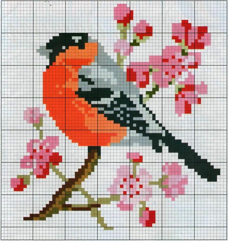 райская птица схемы - Поиск в Google