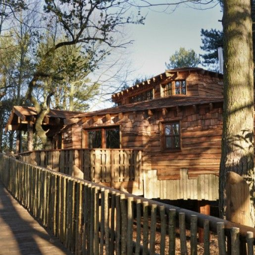 A Treehouse at Sherwood Forest