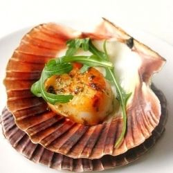 Coquilles Saint-Jacques poêlée (French Sautéed Scallops) Simple appetizers with lots of flavor!