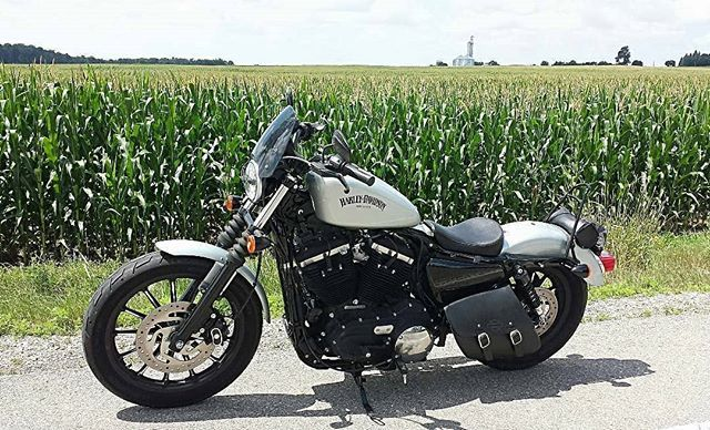 The Iron 883 A Perfect Companion For Traversing The Countryside Credit Basicrunner Harley 883 Iron Featuring The Dark Tint C Harley Harley Davidson Iron 883