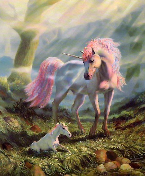 Unicornio  Bebé de Barry Tinkler.