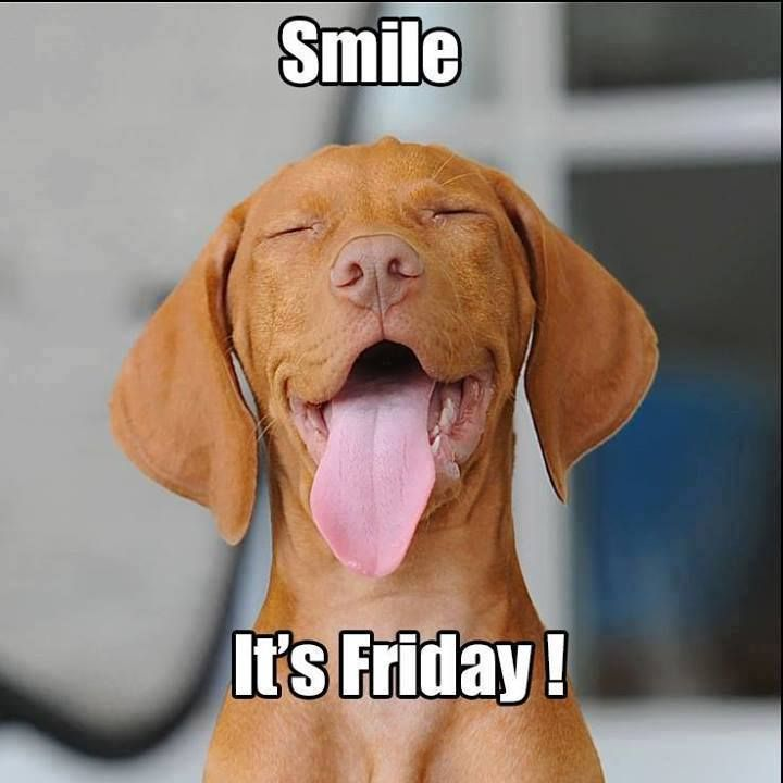 Smile, it's Friday! Have a fantastic weekend!