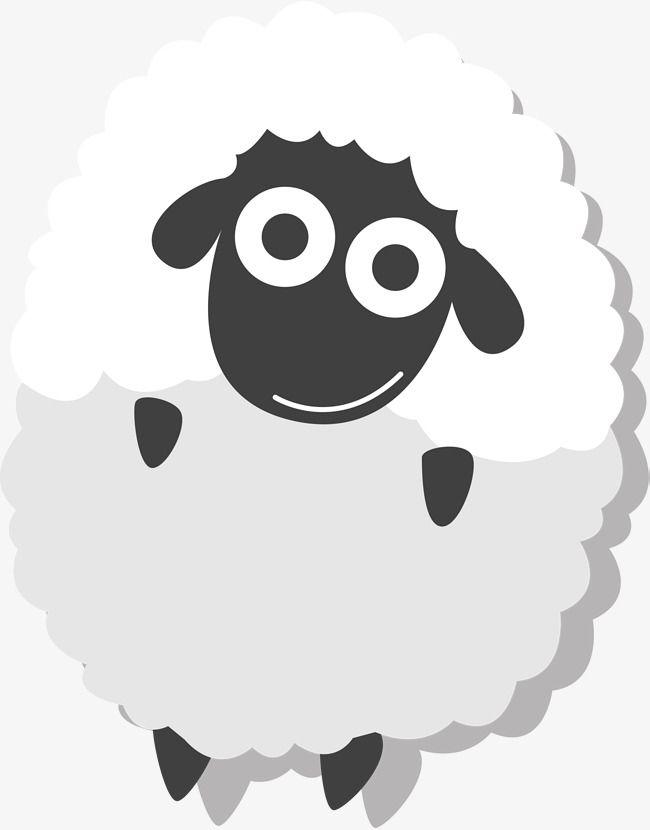 Sheep eid. Al white lovely fitr