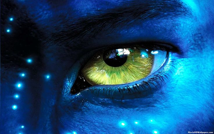 Avatar 2 dans les salles obscures en décembre 2017 !