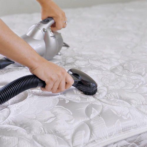 die 49 besten bilder zu pet care auf pinterest   hautbehandlungen ... - Matratze Reinigen Hausmittel Tipps