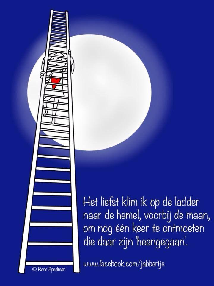 Het liefst klim ik op de ladder naar de hemel, voorbij de maan. Om nog één keer te ontmoeten die daar zijn 'heengegaan'. - Jabbertje