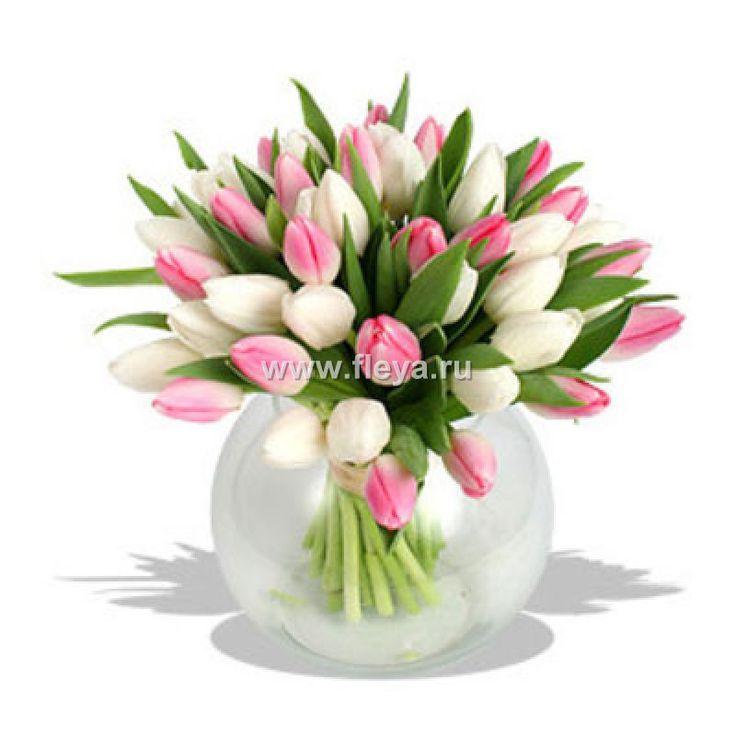 Картинки по запросу букет из тюльпанов