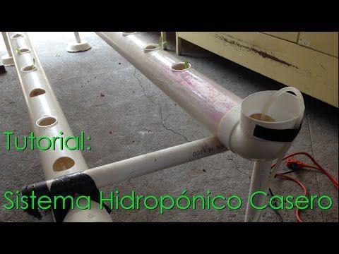 Tutorial - Construcción de un  Sistema Hidropónico Casero - YouTube
