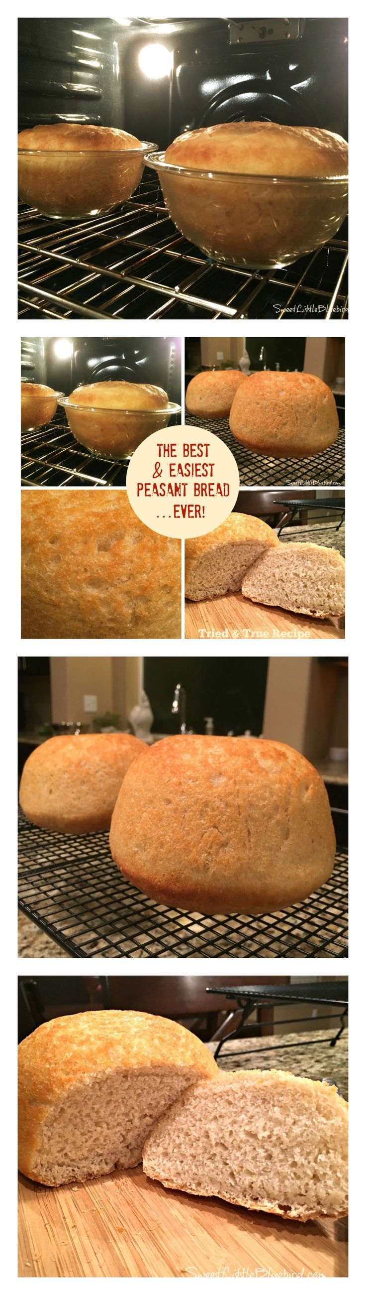 THE BEST & EASIEST PEASANT BREAD....EVER!! No-kneading!! One of my favorite Pinterest finds!!  This wonderful bread is moist and spongy on the inside, with a delicious crispy, buttery crust. I love this bread!! ♥ |  http://SweetLittleBluebird.com