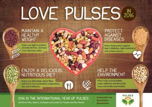 Pulses  Pulse refers only to the dried seed.  Dried peas...