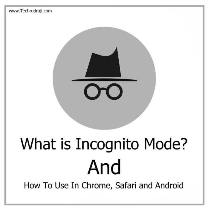 What Is Incognito Mode And How To Use In Chrome Safari And Android Incognito Safari Chrome