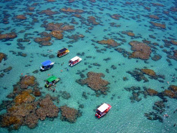 A Praia de Maracajaú fica em Natal e ficou conhecida como o caribe brasileiro, devido à belezas das praias e azul do mar.