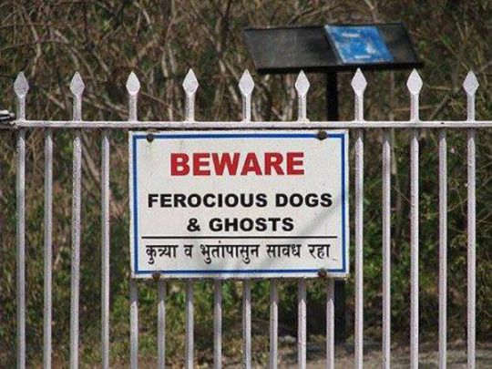 Beware: Ferocious Dogs and Ghosts