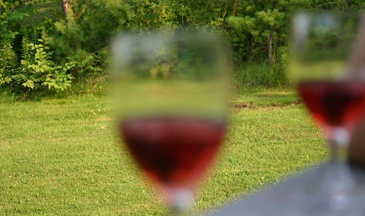 Съединението ресвератрол, което се съдържа в изобилие в червено вино и червено грозде, помага срещу депресия, твърдят учените. Препоръчваме още:Диета с червено виноЧервено вино и грозде помагат срещу затлъстяванеЧервено грозде, червено вино и боровинки за силен имунитетЧервено вино срещу ракЗдравните ползи на червеното виноЛечебният ефект на червеното вино