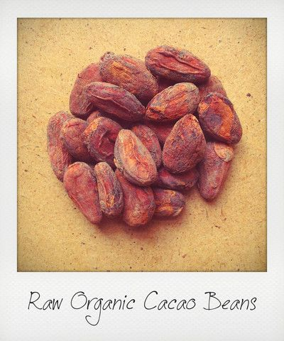Raw Organic Cacao Beans from Ecuador one of our secrets for making Milk Chocolate Skinny Tea! Read my latest blog post to discover how we managed to develop this exciting new detox tea! Sophie Xx