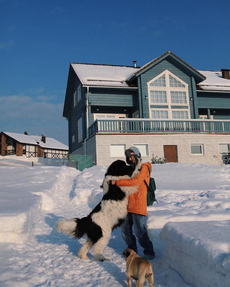 Обожаю✨ #Volkovfamily_dogs #Volkovfamily_house