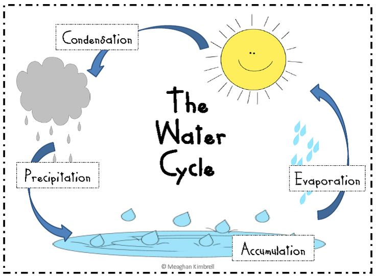 water cycle diagram for preschool  Google Search | Nelli
