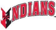 Indianapolis Indians baseball